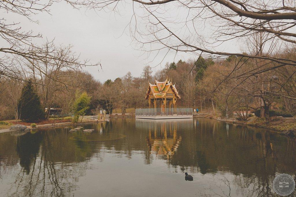 Japanischer Garten im Westpark IV